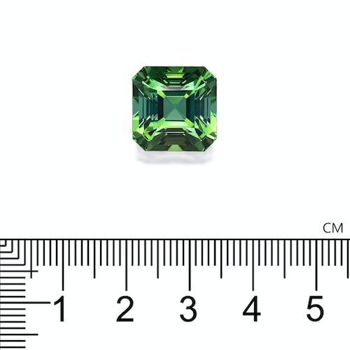 TG1019 2.jpg?auto=format&ixlib=php 3.3 - 16.21ct Green Tourmaline stone 13mm