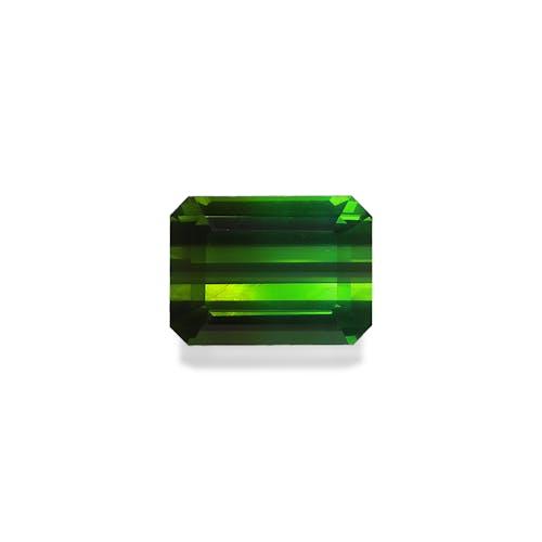 TG1036 : 7.67ct Green Tourmaline