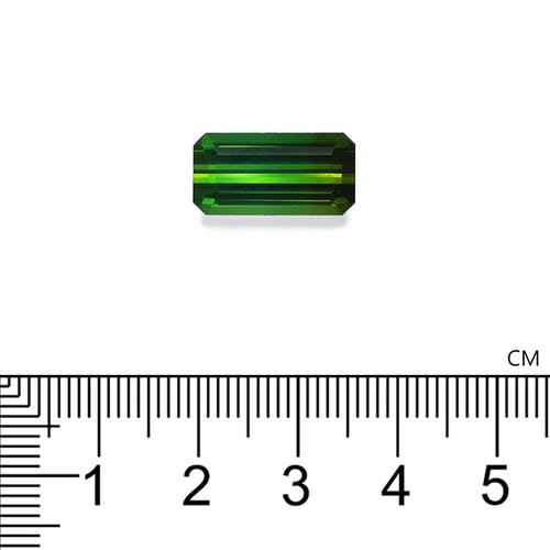 TG1037 : 7.25ct Green Tourmaline