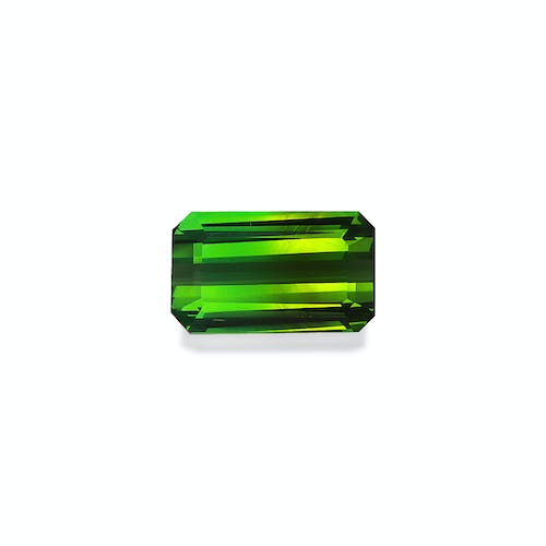 TG1038 : 6.94ct Green Tourmaline