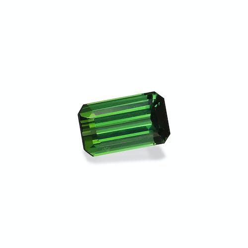TG1047 : 2.83ct Green Tourmaline