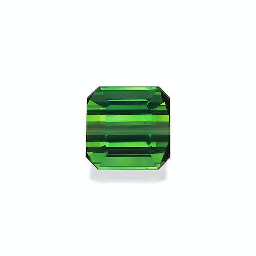 TG1062 : 6.57ct Green Tourmaline