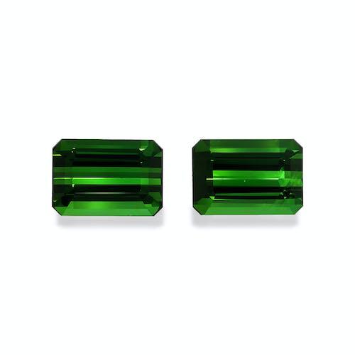 TG1088.jpg?auto=format&ixlib=php 3.3 - 18.53ct Basil Green Tourmaline stone
