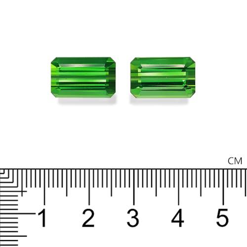 TG1089 2.jpg?auto=format&ixlib=php 3.3 - 17.71ct Vivid Green Tourmaline stone