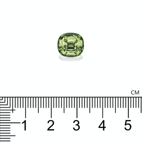 TS0002 : 4.46ct Pale Green Tsavorite