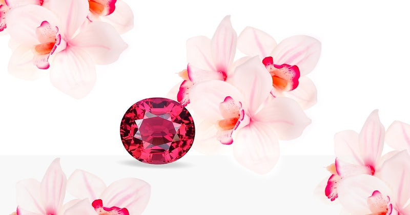 thailand pink orchid.jpg?auto=compress%2Cformat&fit=scale&h=420&ixlib=php 1.2 - Thailand: World Colored Gemstone Hub
